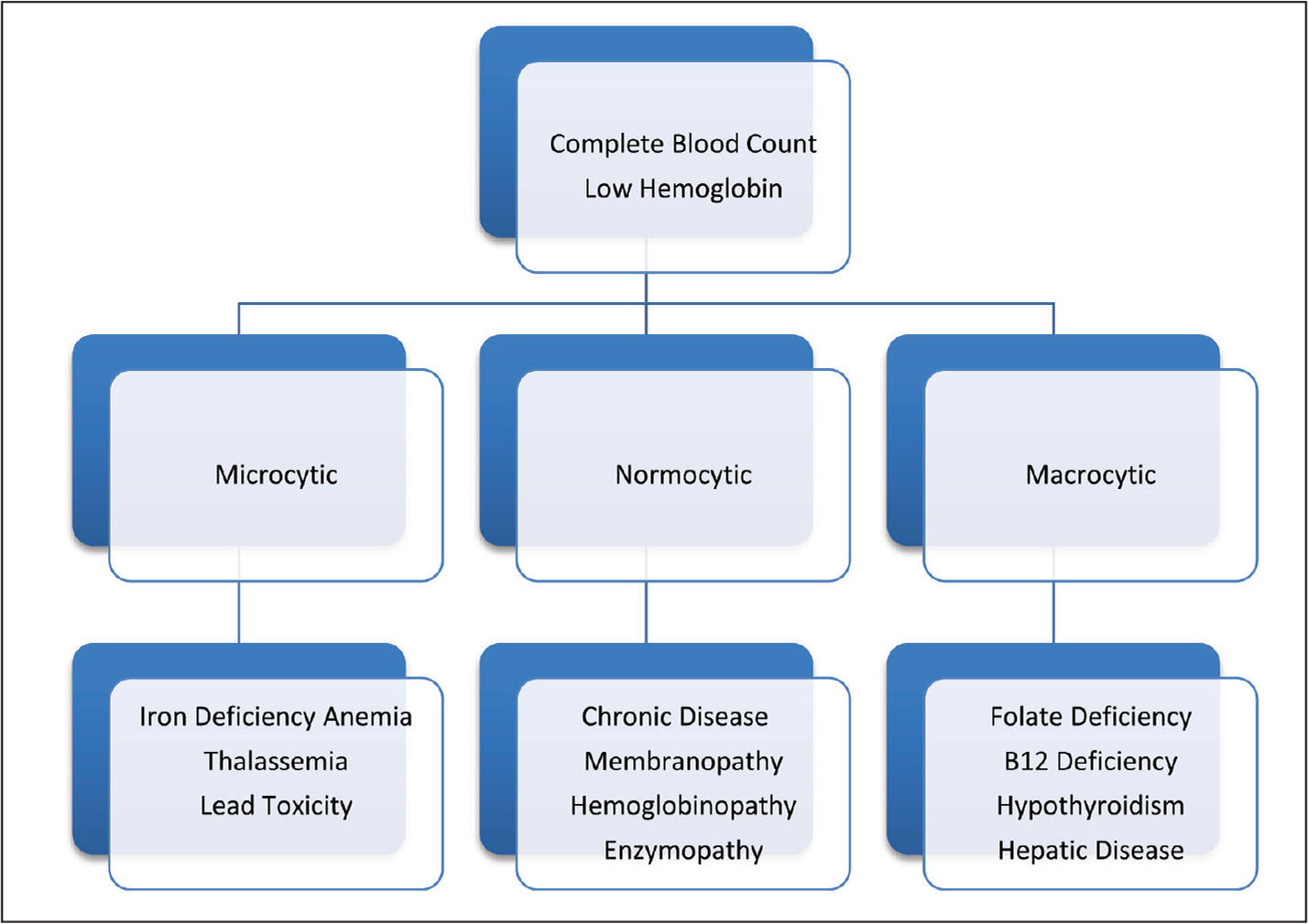 Classification of anemia by cell size.