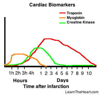 CardiacBiomarkers-LTH