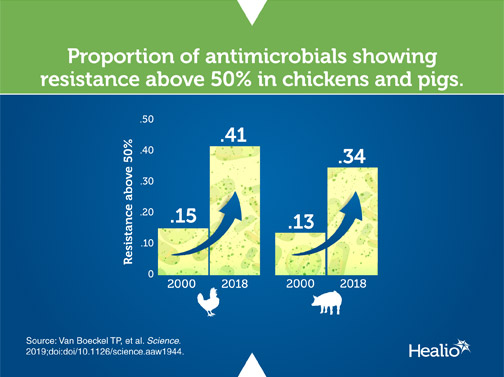 An infographic about antibiotic use among farmyard chickens and pigs