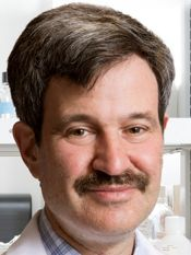 Andrew H. Talal, MD, MPH